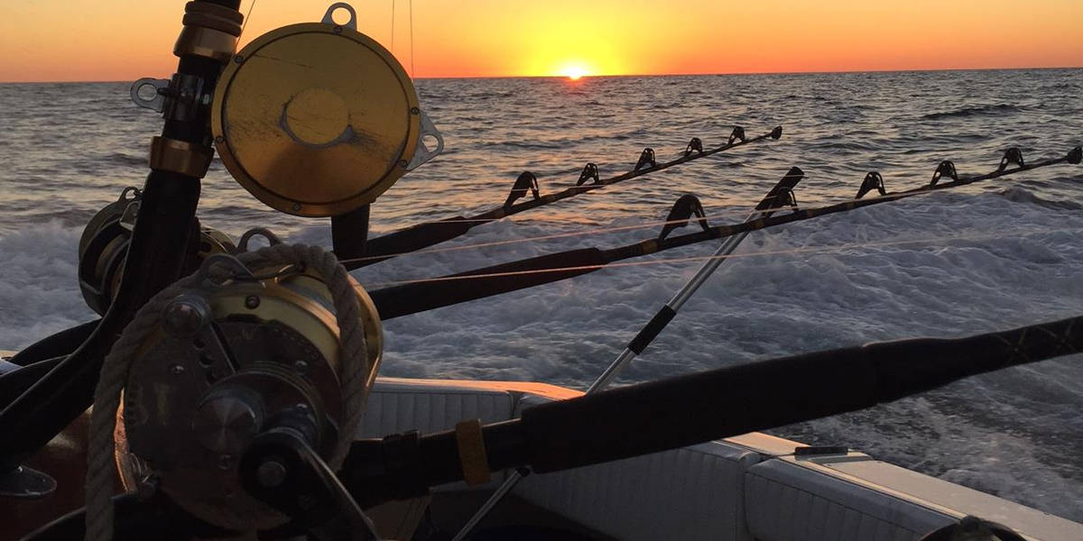 Biloxi bluewater charters offshore deep sea fishing for Deep sea fishing biloxi
