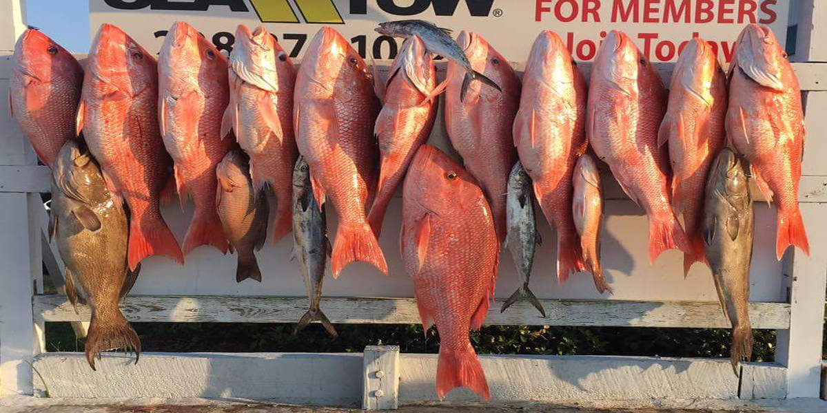 Red Snapper Biloxi MS